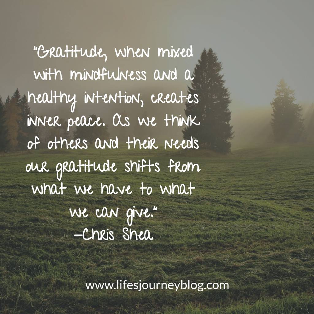Finding True Gratitude Through Mindfulness And Action