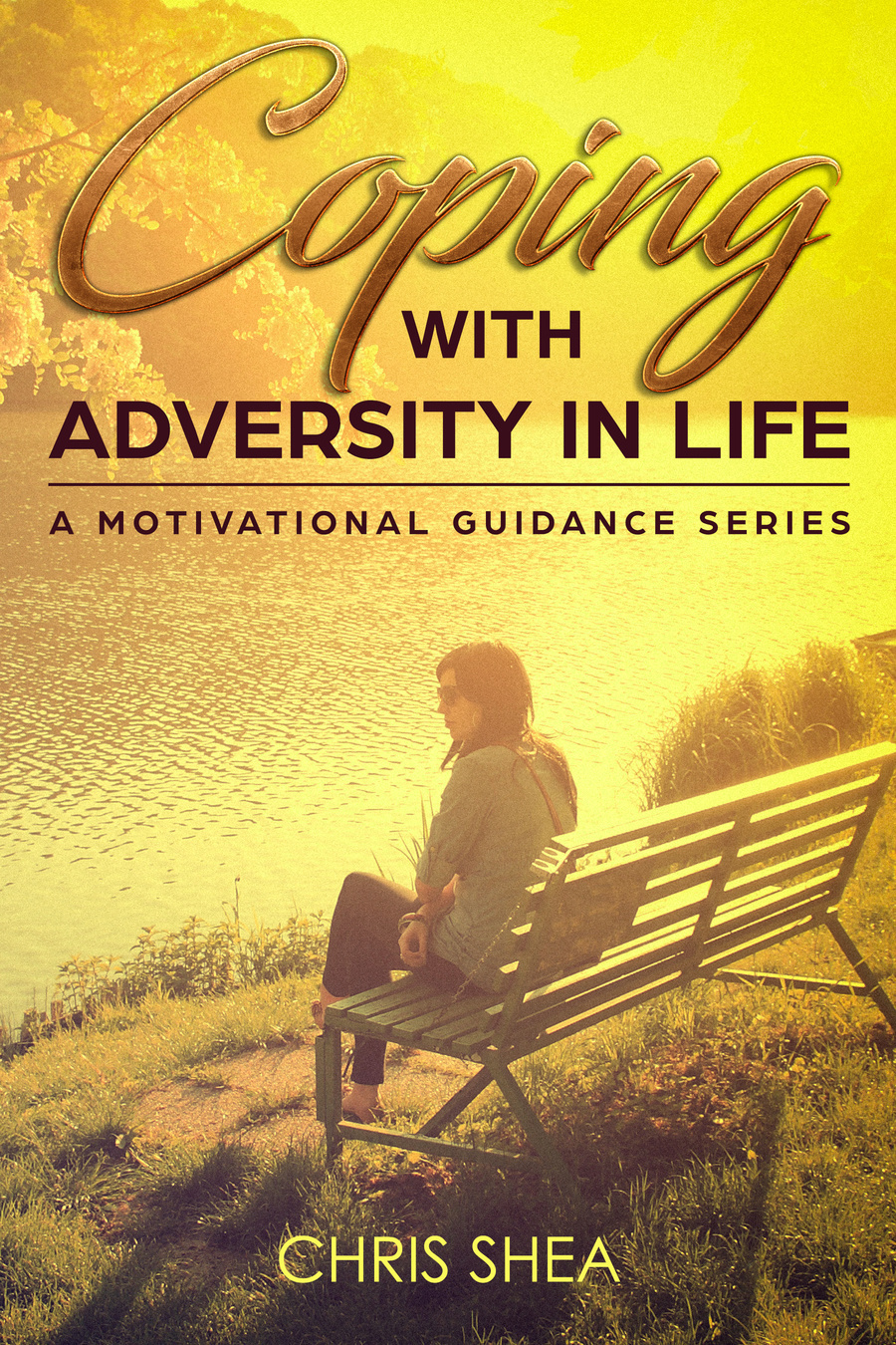 adversity book cover